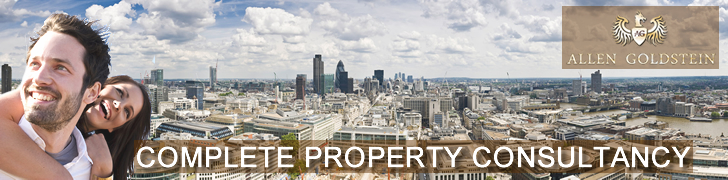 Allen Goldstein | London Property Agent